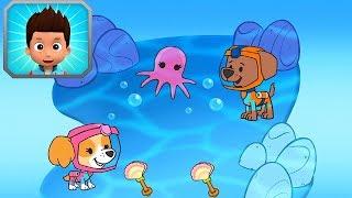 ЩЕНЯЧИЙ ПАТРУЛЬ подводное погружение Скай и Зумы в поисках погремушек для осьминожек  МУЛЬТИКИ для Д