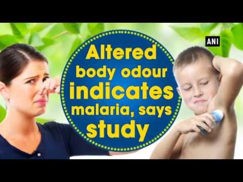 Altered body odour indicates malaria, says study