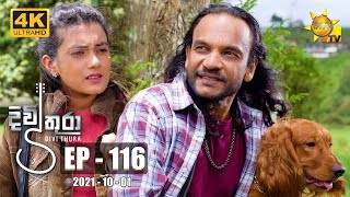 Divithura - දිවිතුරා | Episode 116 | 2021-10-01 Thumbnail