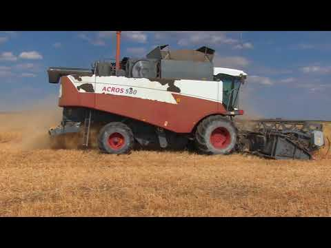 На полях ООО Светлое началась уборка зерновых