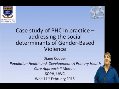 Gender Based Violence - Prof Di Cooper