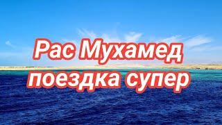 Шарм эль Шейх 18 марта 2021 г Сезон морских прогулок на яхте открыт Красота дух захватывает