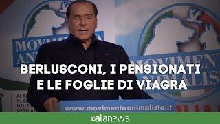 Berlusconi, i pensionati e le foglie di viagra
