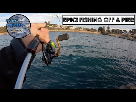 EPIC! Fishing Off A Pier