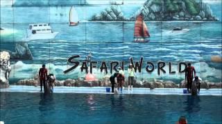 Safari World Dolphin Show Bangkok 2012 12