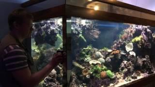 Обслуживание аквариумов(Аквариумный салон «Аква Лого» занимается профессиональным обслуживанием аквариумов с 1995 года. Высокая..., 2016-07-08T08:57:58.000Z)