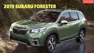 2019 Subaru Forester  - Interior and Exterior - Phi Hoang Channel.