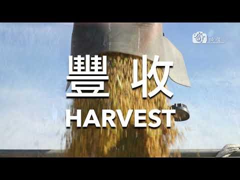 Yilan / Sanxing - 宜蘭空拍 (三星) 2019 / 4K Ultra HD