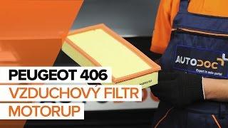 Jak vyměnit vzduchový filtr motoru na PEUGEOT 406 NÁVOD | AUTODOC