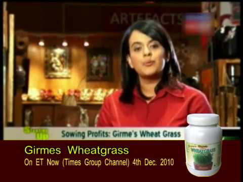 Wheatgrass Powder - Manufacturer & Exporting Co.