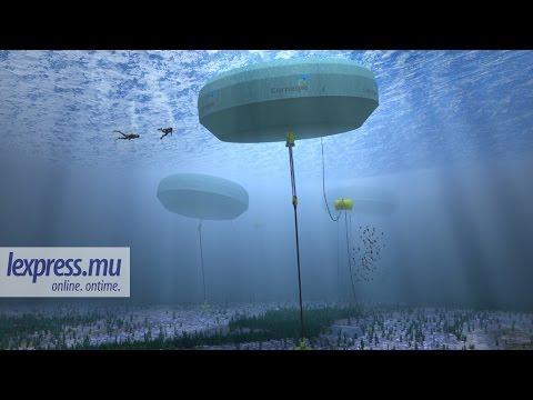 Energie des vagues: expertise australienne pour Maurice