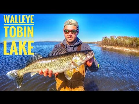 Big Walleye Search, Tobin Lake Saskatchewan - Day 2