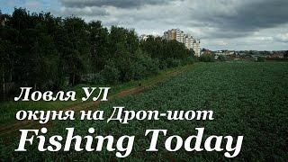 Ловля ВУЛ окуня на Дроп-шот - Fishing Today