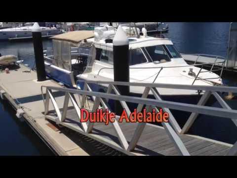 Dive Adelaide Nov 2017