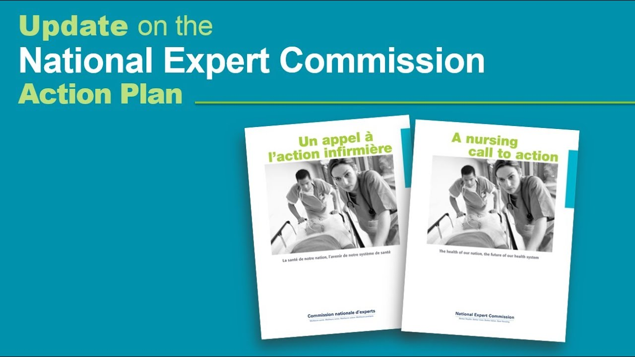 National Expert Commission