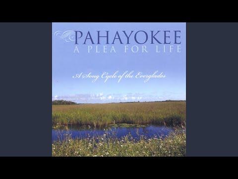 Prayer To Pahayokee