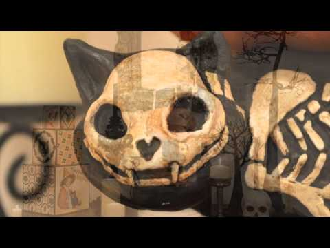 Bethany Lowe Haunted Cat With Pumpkin