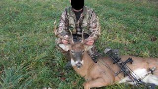 Deer massacre. 18+