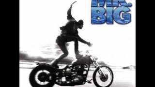 A Rose Alone - Mr. Big I do not own this song all the rights goes t...