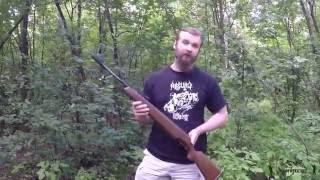 Обзор винтовки Diana 48