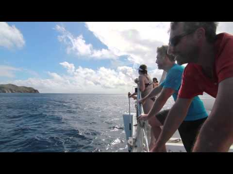 What's it like to sail In British Virgin Islands?