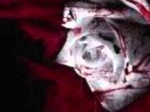 Evanescence Imaginary Paper Flowers With Lyrics Youtube