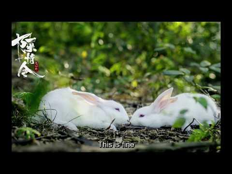 [ENG SUB] MDSZ Mo Dao Zu Shi Audio Drama Special: Lan Wangji Raising Rabbits