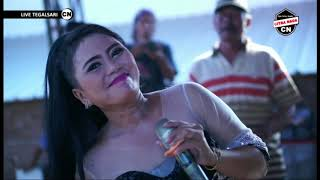 Download lagu WULAN PURNAMA || BUNDA MUMUN || CITRA NADA LIVE TEGALSARI (JONGOR) || TEGAL