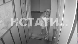 Нижегородская «шапокляк» превратила лифт в передвижной мусоропровод