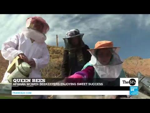 Afghanistan: Women beekeepers enjoying sweet success