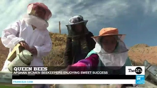 Afghanistan: Women beekeepers enjoying sweet success