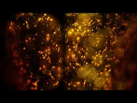 Download Magic Stool (AN AREA COMEDY TV SKIT) GHANA FUNNY VIDEO