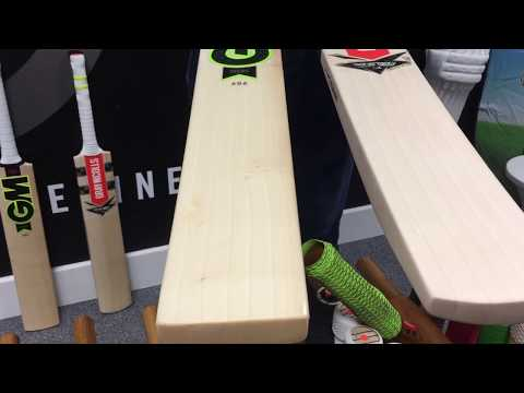 Gray-Nicolls Powerbow 6X 5 Star Lite Small Men's Cricket Bat Vs. GM Zelos Academy 606 Cricket Bat