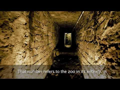 #The Zookeeper