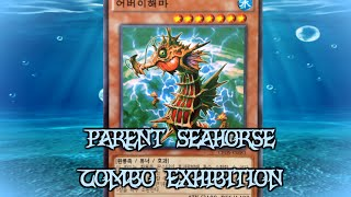 YGOPro Combo Exhibition 2 - More Parent Seahorse shenanigans