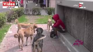 بالفيديو - الطفل الراقص مع الكلاب يثير ضجة في مصر.. ما قصته؟