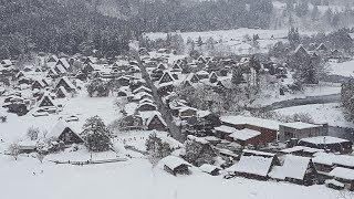 Japan in Winter - Nagano, Snow Monkeys, Takayama, Shirakawa-go