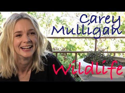 DP30: Carey Mulligan, Wildlife