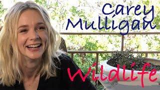 DP/30: Carey Mulligan, Wildlife