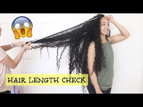 How Long is My Hair?? | Hair Length Check