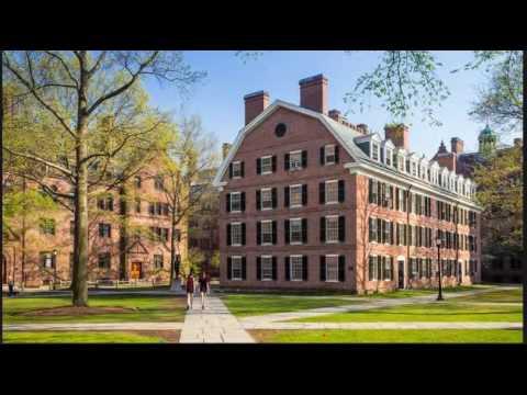 yale university new