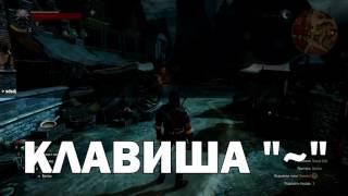 КАК АКТИВИРОВАТЬ ЧИТЫ Ведьмак Гвинт