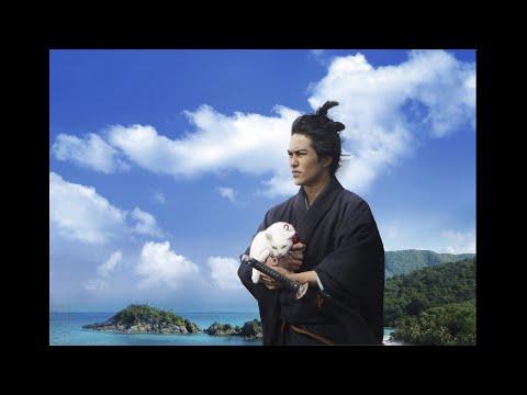 猫好きにはたまならいシュールさ。映画『猫侍 南の島へ行く』の猫がカワイイ