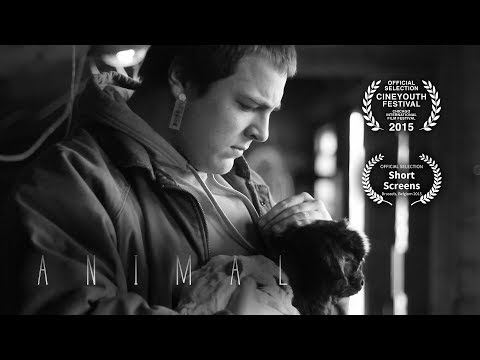 Animal - Silent Short Film by Will Jacobs (Chicago CineYouth Festival) (Short Screens Festival)
