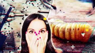 How to treat woodworm.  Microwave Shashel