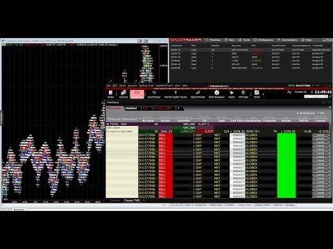 Automated Trading at Interactive Brokers with Tradestation and Ninjatrader 8
