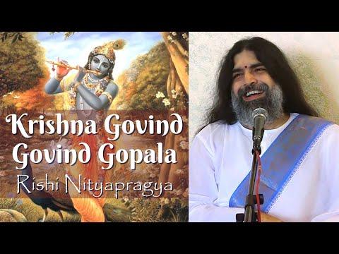 Krsihna Govind Govind Gopala/Narayan Narayan Jai Jai -Rishi Nityapragya-Sumeru Sandhya at Faridabad