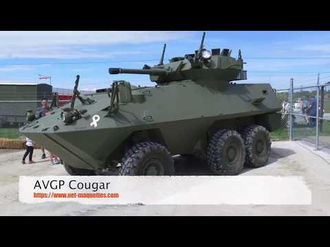 AVGP Cougar