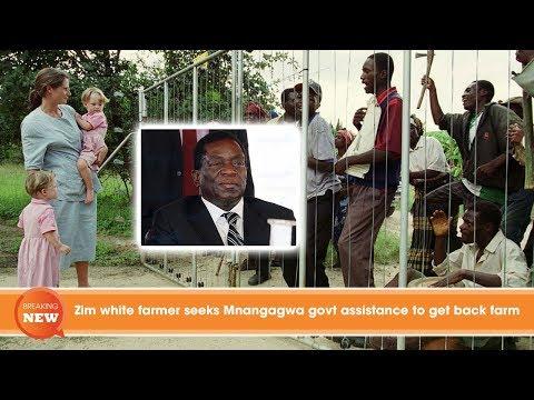 Zim white farmer seeks Mnangagwa govt assistance to get back farm