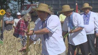 на Первомайщине скосили первый сноп урожая-2017